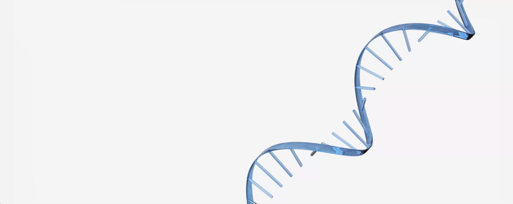 RNA strand against a white background