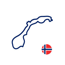 Norway icon with flag